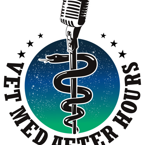 """Episode 5 Dr. Tracy Sands: """"What you say Matters"""""""