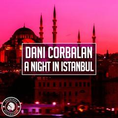 Dani Corbalan - A Night In Istanbul (Radio Edit)