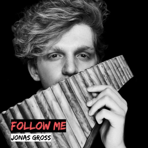 Muse - Follow Me (JONAS GROSS COVER)