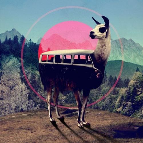 C๏sʍ๏cast ★ 18 | Stelzenläufer | A Pan American Road Trip