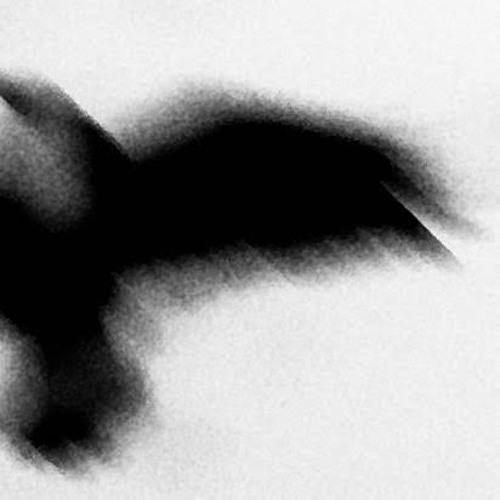 (Less Than) One Minute of Japanese Crows (Evening at Nara): May 18