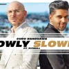 SLOWLY SLOWLY Guru Randhawa Ft. Pitbull Bhushan Kumar DJ Shadow