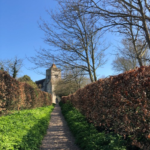 One Minute of Birdsong (Firle Church, Sussex Downs): March 18