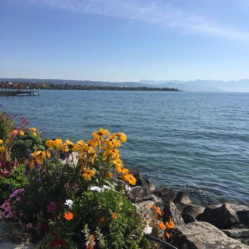 One Minute of My Feet in Lake Geneva (Last Day of Residency at Jan Michalski): Sept 17