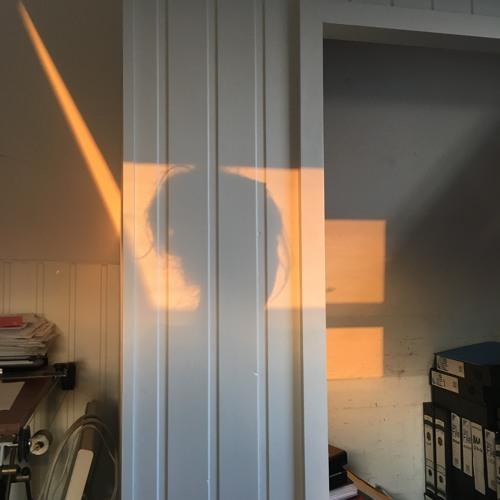 One Minute in a Borrowed House (Barbara Barbara We Face a Shining Future): July 17