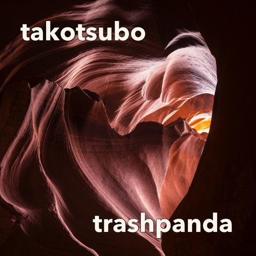 Takotsubo [Live] @ Electric Sheep The Rite of Spring