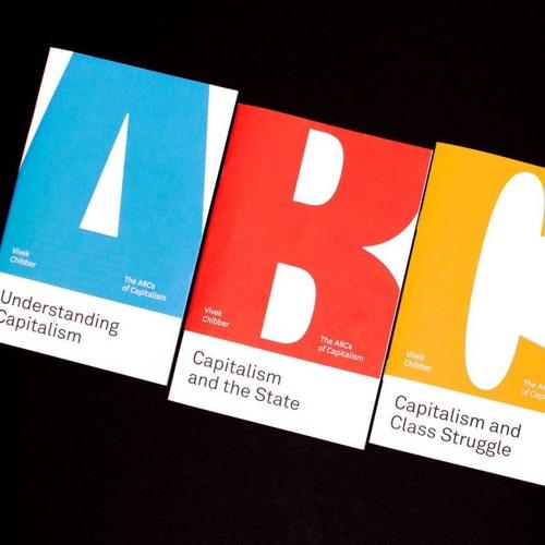 "Bonus: Amber Interviews Vivek Chibber on ""The ABC's of Capitalism"""