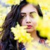 Autumn Leaves- Eva Cassidy (cover by Abhilasha Sinha)
