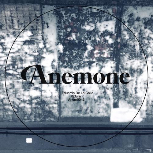Eduardo De La Calle - VIMANAS (Preview) - Anemone Recordings