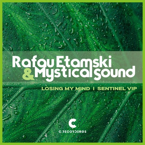 Mystical Sound, Rafau Etamski - Losing My Mind vs. Sentinel VIP 2019 [EP]
