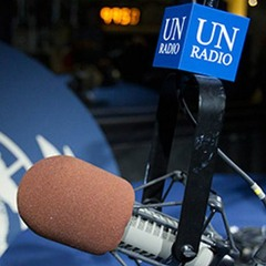 Jornal da ONU - 29 de abril de 2019