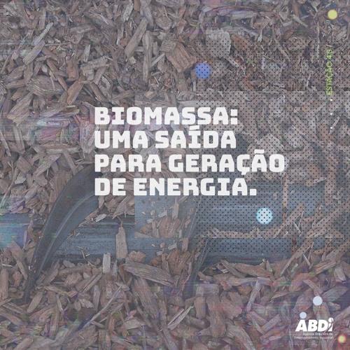 Biomassa: uma saída para geração de energia