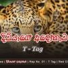 Diviyage Adonawa U0dafu0dd2u0dc0u0dd2u0dbau0dcfu0d9cu0dda U0d85u0db3u0dddu0db1u0dcfu0dc0 Rap No01 T Tag Sinhala Rap New Mp3
