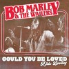 Bob Marley - Could You Be Loved (R3dX Bootleg) FREE DOWNLOAD