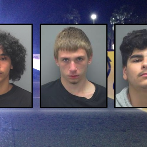 Juveniles Arrested For Stealing Firearm - Items And Truck