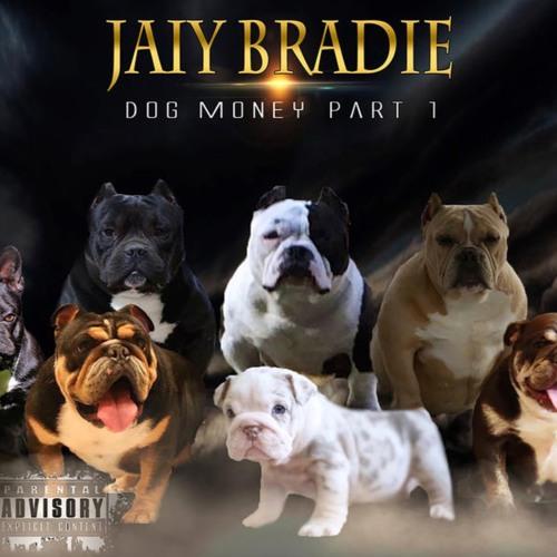 Jaiy Bradie- Dog Money