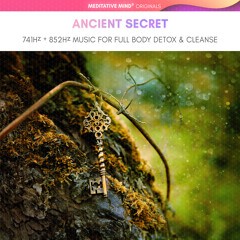 Ancient Secret ✧ 741Hz + 852Hz ✧ FULL BODY DETOX & AURA CLEANSE
