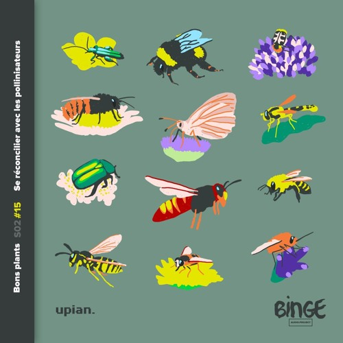 Se réconcilier avec les pollinisateurs