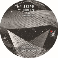 VBS05 Triad - Chong Ji Pai Incl. Dubphone Remix - Vinyl Only