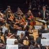 Ingxunguphalo - The Great Sorrow (Philadelphia Sinfonia Chamber Orchestra)