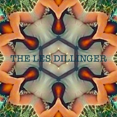 Swither And The Floor Dogs Go Funking - The Les Dillinger