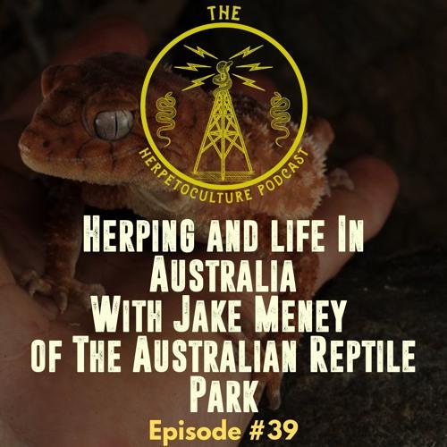 Herping & Life in Australia with Jake Meney of The Australian Reptile Park