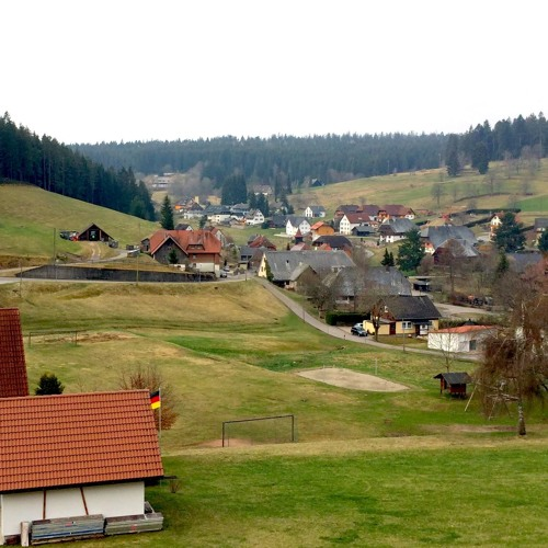 Waking Up In The Black Forest - A Field Recording