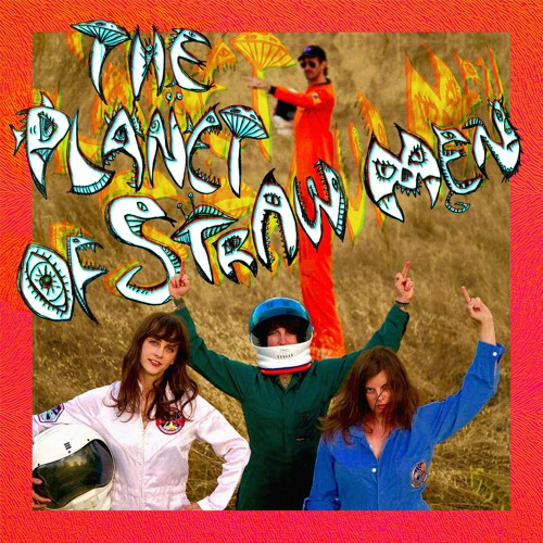 Tropical Fuck Storm - The Planet Of Straw Men