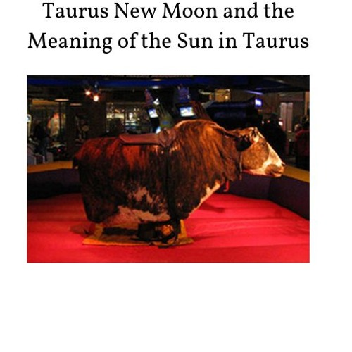 The New Moon in Taurus and the Meaning of the Sun in Taurus