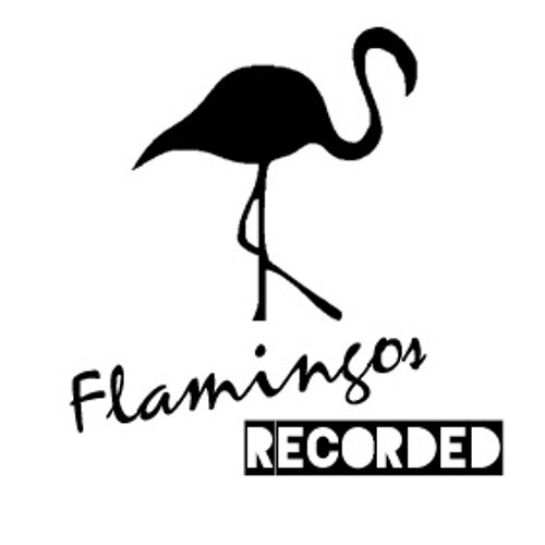 Flamingos recorded 05 with JUDY