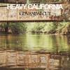 Jungle - Heavy California (GD Vandal Cut) [Raw Cuts 001]