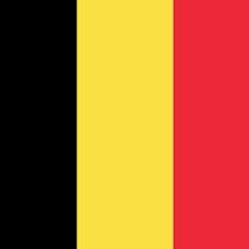 Voyage Belgique classe de 1ère SAPAT