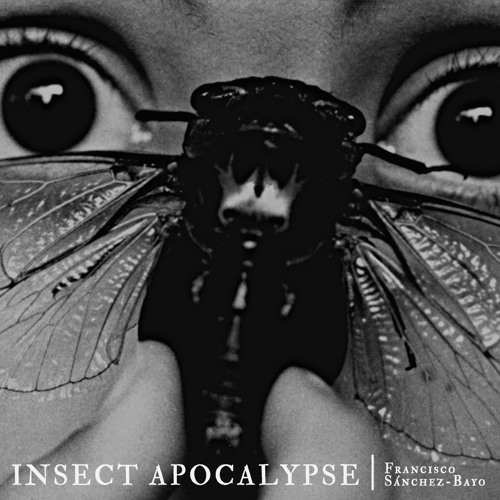 #194 | Insect Apocalypse: Drivers Of The Worldwide Decline Of Entomofauna w/ Francisco Sánchez-Bayo