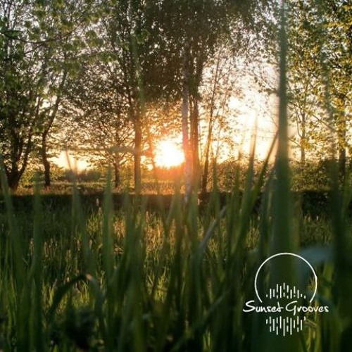 Sunset Grooves Podcast #151 - Andi From The Leipzig Tribe Of Peace