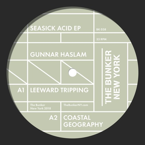 "Gunnar Haslam ""Seasick Acid"" EP(The Bunker New York BK-038) - CLIPS"