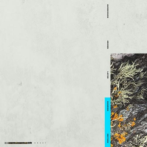 Ausschuss - Drown Later (Sunrise Edition)[HR021]