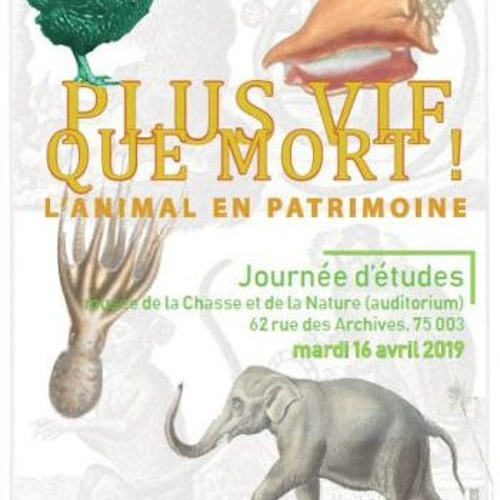 Ouverture de Claude d'Anthenaise, Directeur du musée de la Chasse et de la nature