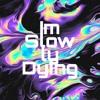 Im Slowly Dying (lyrics in description)