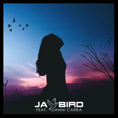 Jay Bird Feat Danni Carra- Let You Down