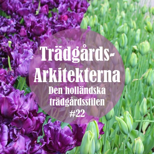 Den holländska trädgårdsstilen