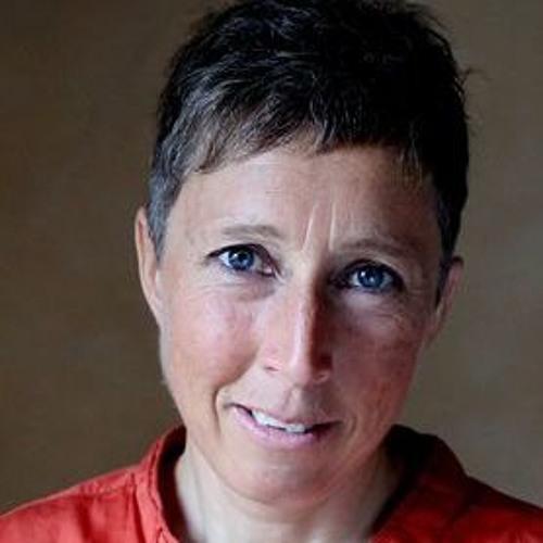 Nathalie Courtet, Itinérance d'une femme seule en Laponie