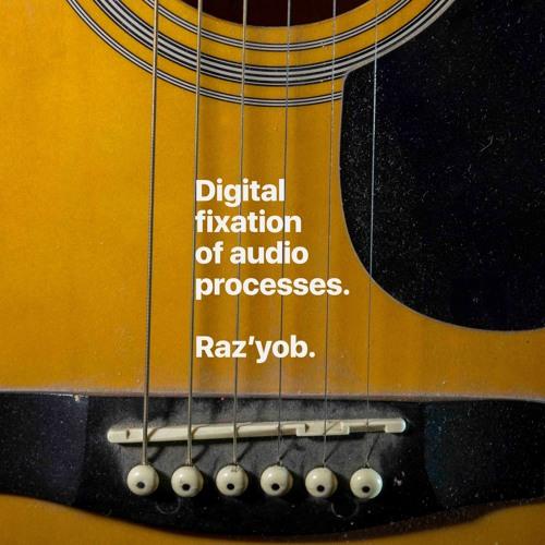 Digital fixation of audio processes — Raz'yob