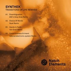 Synthek  - B2. Consciousness & Intent (natural/electronic.system Remix)