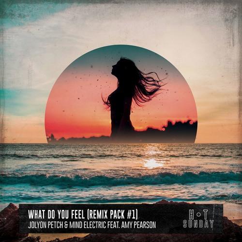 Jolyon Petch & Mind Electric Ft. Amy Pearson - What Do You Feel (Elektrik Disko Mix)