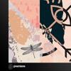 Premiere: Roman Rai - Nature & Silence (Täino Remix) - Moving Pictures