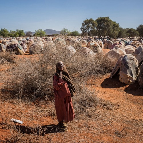News in Brief - 15 May 2019 - Pacific Islands, global health and drought in Somalia