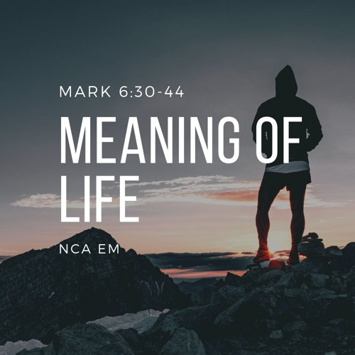 Meaning of Life (Mark 6:30-44) - John Kim by New Church of
