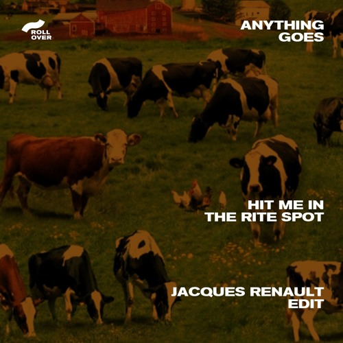 Anything Goes - Hit Me in The Rite Spot (Jacques Renault Edit)