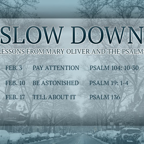 Slow Down: Be Astonished