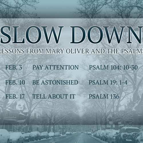 Slow Down: Pay Attention